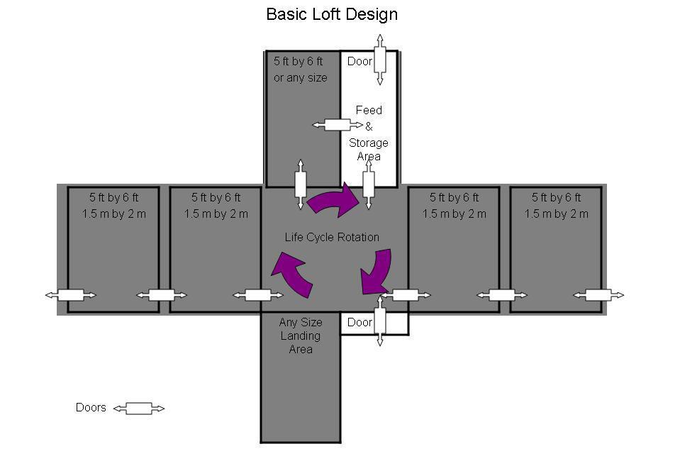 Basic Loft Design